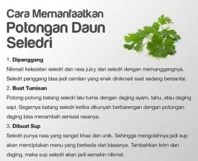 Macam-Macam Tips Bermanfaat Keseharian (12)