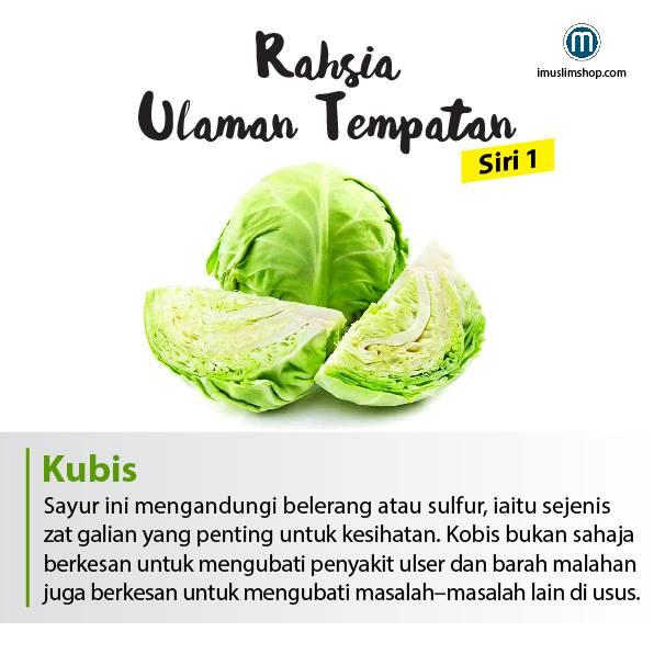 berbagai manfaat sayuran yang baik untuk tubuh kita 3