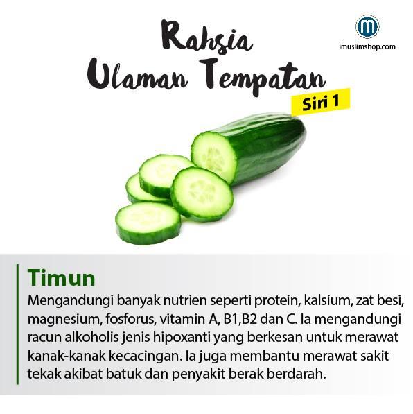 berbagai manfaat sayuran yang baik untuk tubuh kita 5