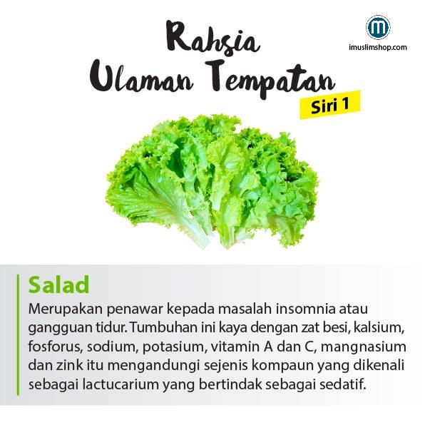 berbagai manfaat sayuran yang baik untuk tubuh kita 6