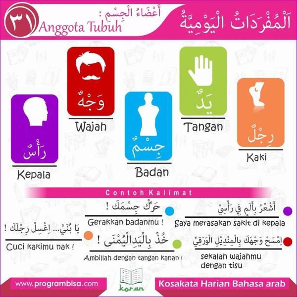 kosa kata harian bahasa arab 31