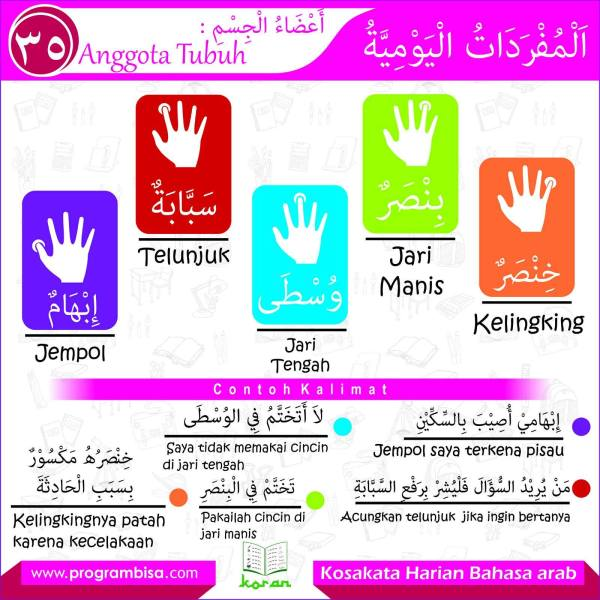 kosakata harian bahasa arab 35