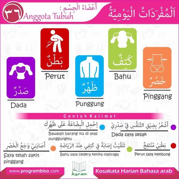kosakata harian bahasa arab 36