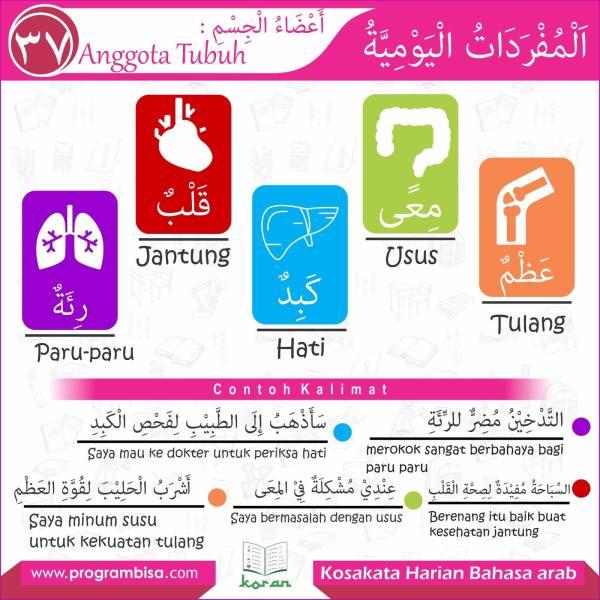 kosakata harian bahasa arab 37