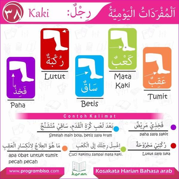 kosakata harian bahasa arab 38