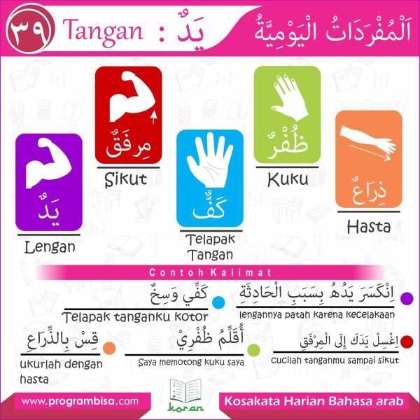 kosakata harian bahasa arab 39
