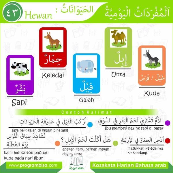 kosakata harian bahasa arab 43