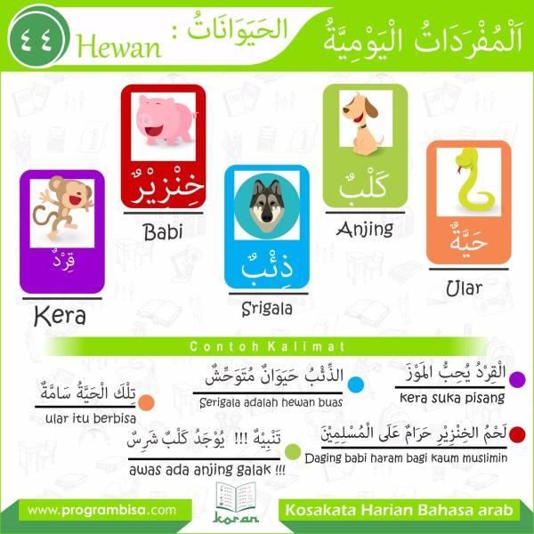 kosakata harian bahasa arab 44