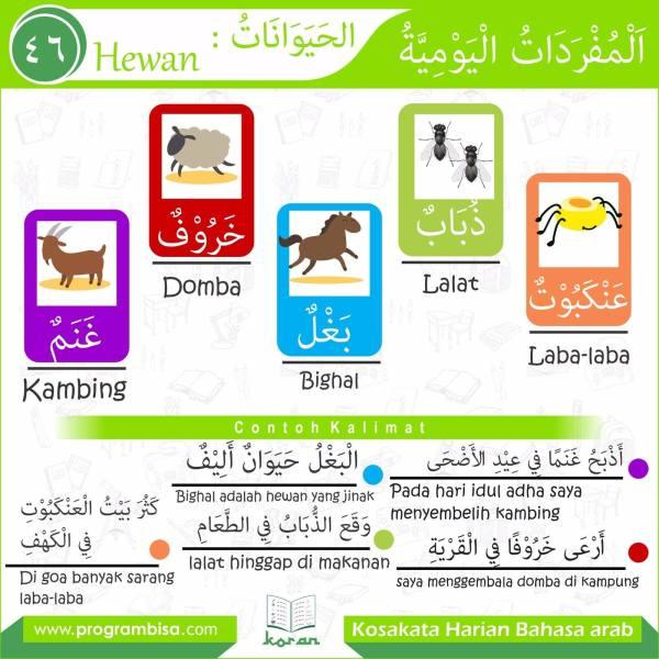 kosakata harian bahasa arab 46