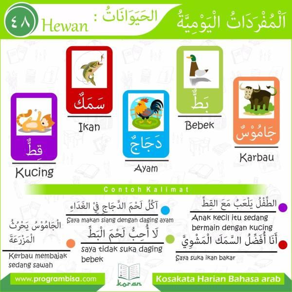 kosakata harian bahasa arab 48