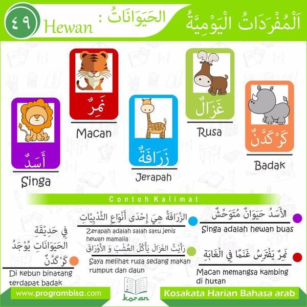 kosakata harian bahasa arab 49