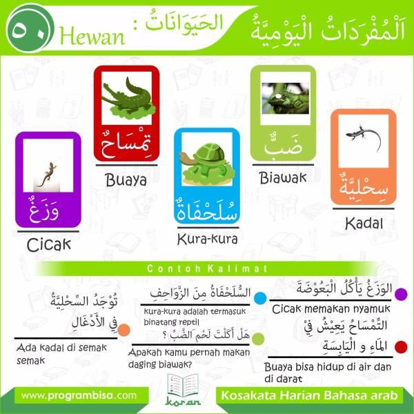 kosakata harian bahasa arab 50