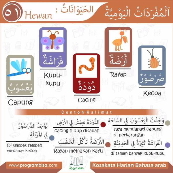 kosakata harian bahasa arab 51